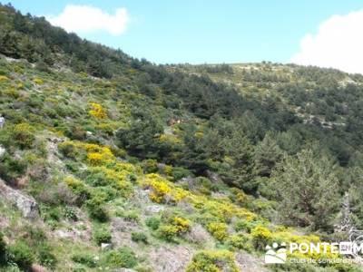 Senderismo Sierra de Guadarrama - Mujer Muerta; senderismo gratis; senderismo principiantes madrid